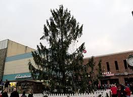 pa u0027s own charlie brown christmas tree w va u0027s frosty the snowman