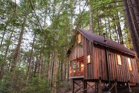 owl tree cabin small house bliss
