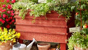 Lowes Planter Box by Elevated Planter