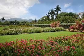 Hope Gardens Family Center Home Page Sagicor Group Jamaica