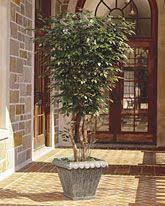 hobby lobby silk ficus trees tree decor small