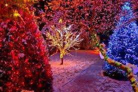 christmas light service chicago christmas light installation hobart in professional christmas