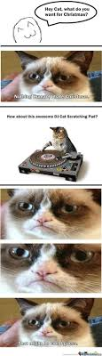 19 Awesome Grumpy Cat Christmas - 688 best all hail grumpy cat images on pinterest funny stuff