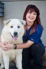 pleasant valley veterinary clinic our staff