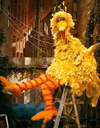 big bird through the years muppet wiki fandom powered by wikia
