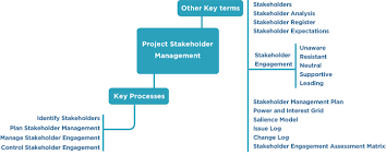 frontiers project stakeholder management in the clinical