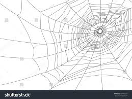 halloween background black spider web isolated spider web cobweb background halloween stock vector