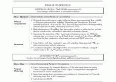 Sample Technical Resume by Download Administrative Resume Samples Haadyaooverbayresort Com