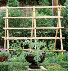 Tomatoes Trellis Diy Trellis Ideas Going Home To Roost