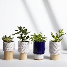 best planters indoor window box planters suitable with best indoor planters