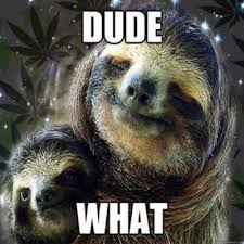 Sloth Rape Meme - the sloth on twitter sloth likes rape shhhh hide yo kids