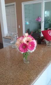 gerber daisy in redondo beach ca brooke u0027s flowers