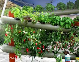 hydroponic vertical garden gardening with hydroponics in soil