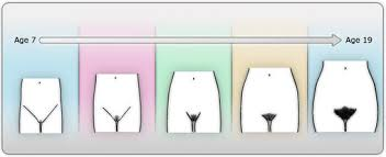 how to shape your pubic hair puberty ask kali girl advice