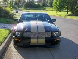 stripes on mustang the decal shoppe car graphics truck graphics graphic decals