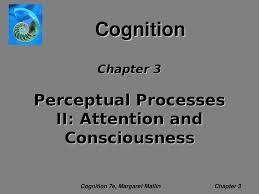perceptual processes ii attention and consciousness docsity