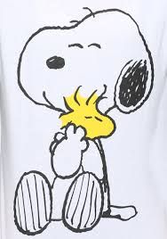 snoopy and woodstock halloween costumes peanuts snoopy and woodstock hugging womens raglan shirt