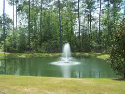 Building A Fish Pond In Your Backyard by Best 25 Pond Fountains Ideas On Pinterest Ponds Backyard Ponds