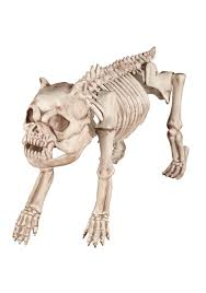poseable skeleton bones the hungry hound skeleton dog