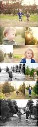 80 best christmas tree photo shoot images on pinterest christmas