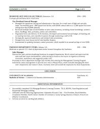 essay on hindi bhasha custom academic essay writer for hire uk