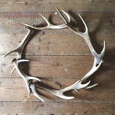 28 best antler lights images on antler lights antler