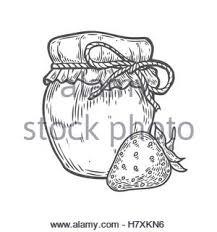 raspberry jam jar ink hand drawn vector illustration harvest