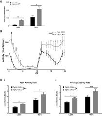 brain serotonin deficiency causes hyperactivity circadian