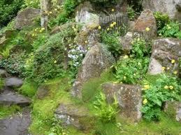 making a rock garden or rockery gardeners tips