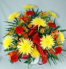 cheapest flowers what are the cheapest types of flowers quora