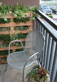 How To Make An Urban Garden - 180 best so cal urban garden images on pinterest landscaping