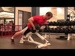 Incline Bench Dumbbell Rows Incline Dumbbell Row Exercise Com