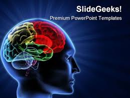 templates for powerpoint brain brain powerpoint templates slides and graphics