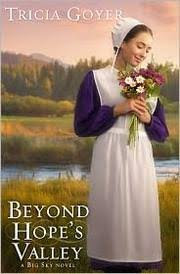 amish wedding dress spotlight on the traditional amish wedding rt book reviews