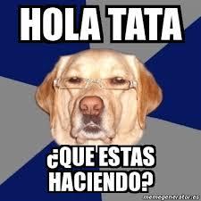Tata Meme - meme perro racista hola tata que estas haciendo 16217214