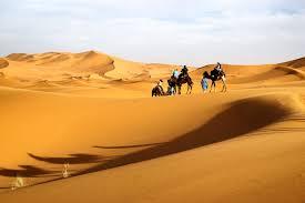 images for u003e sahara desert cartoon desert painting ideas