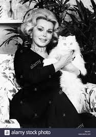 zsa zsa gabor actress sitting holding a white persian cat