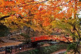 10 gorgeous places autumn leaves momiji u2013 fall foliage