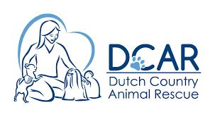 dutch country animal rescue pa petfinder com