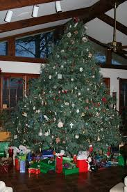 christmas tree farming throughout the year