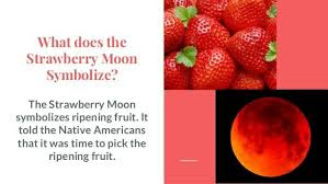 what is a strawberry moon summer solstice brings a once in a generation strawberry moon