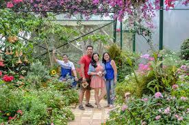 8 reasons to visit sonya u0027s garden u2013 appetizing adventure
