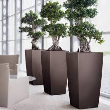 awe inspiring modern indoor planters delightful decoration urban