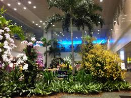 indoor gardens outside in airports sprout indoor gardens to help