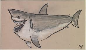 matt dawson shark sketches der dum der dum da da da da