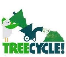 Christmas Tree Pick Up Recycle Your Christmas Tree Bonus Free Mulch