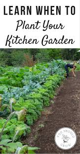 4941 best images about vegetable garden inspiration u0026 tips on