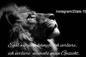 sprüche löwe b m zitate 15 instagram posts deskgram