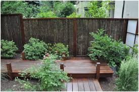 easy backyard ideas backyards wondrous backyard bamboo bamboo plants backyard