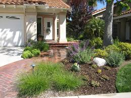 Drought Friendly Landscaping by 20 Best Drought Tolerant Landscapes Images On Pinterest